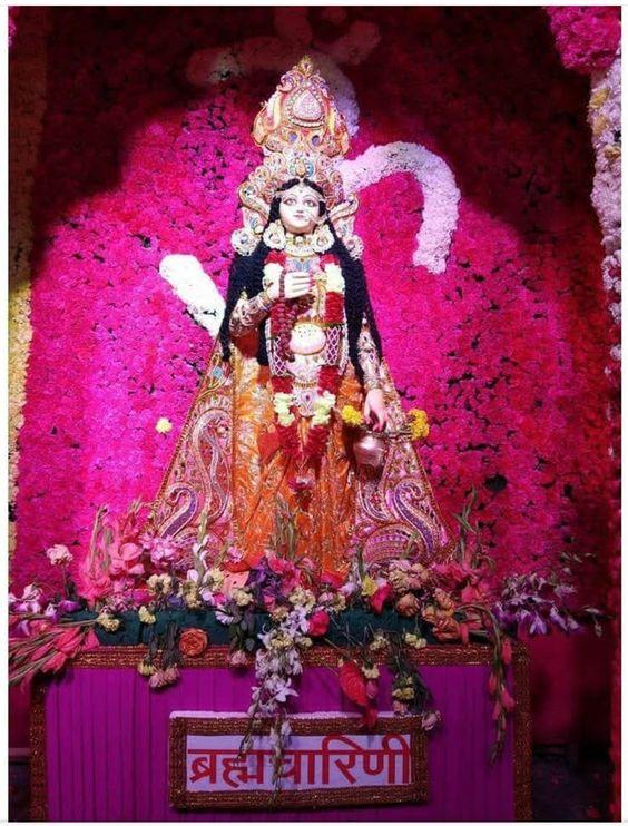 Brahmacharini Mata Image