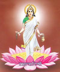 Maa Brahmacharini Pic Download
