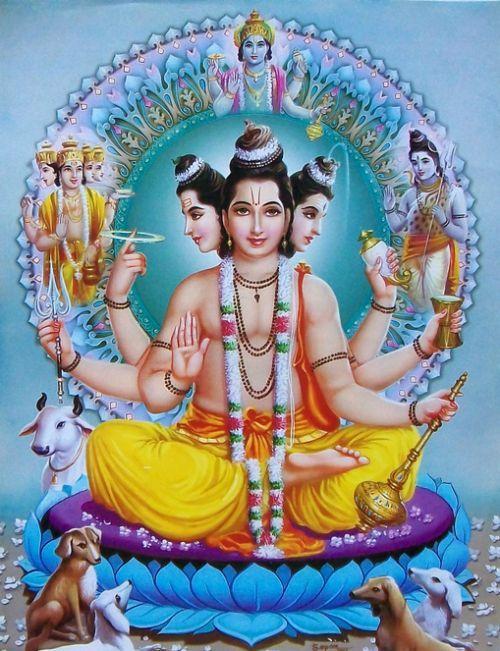 Shri Gurudev Datta Hd Wallpaper
